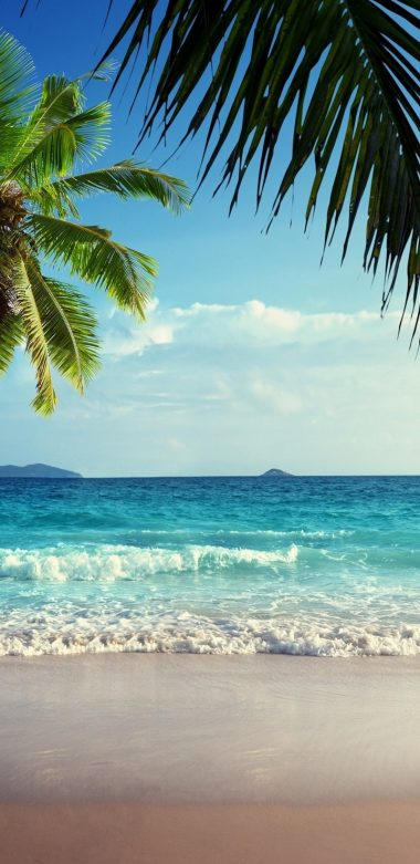 Tropical Ultra HD Wallpaper 720x1480 380x781