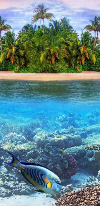 Underwater Ultra HD Wallpaper 720x1480 380x781