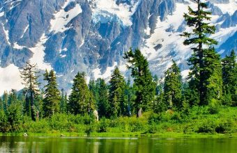 Washington Lake Mountains Trees Landscape Wallpaper 720x1520 340x220