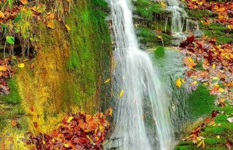 Waterfall Autumn Lovely Stream Wallpaper 720x1520 340x220