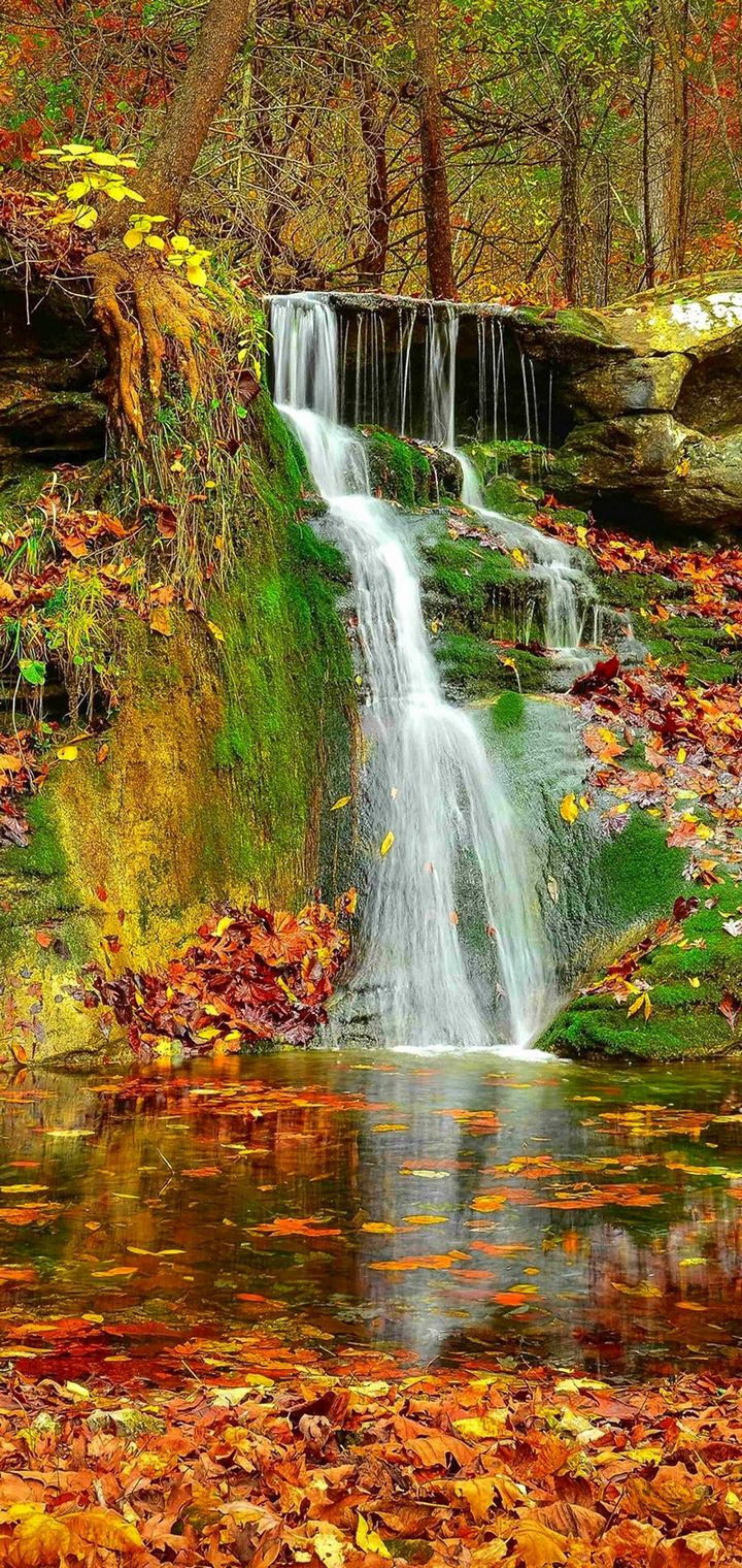 Waterfall Autumn Lovely Stream Wallpaper 720x1520