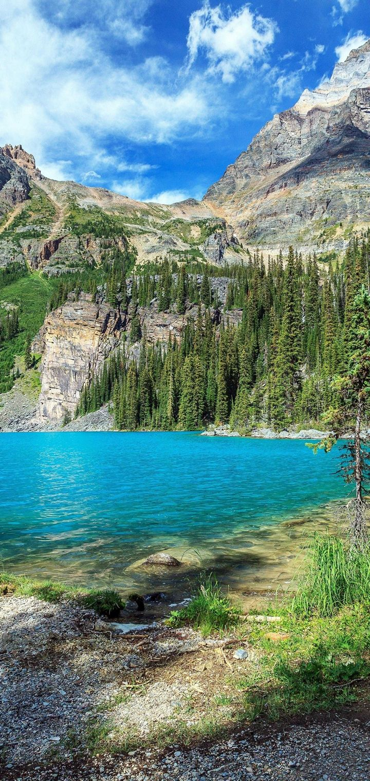 Yoho National Park British Wallpaper 720x1520