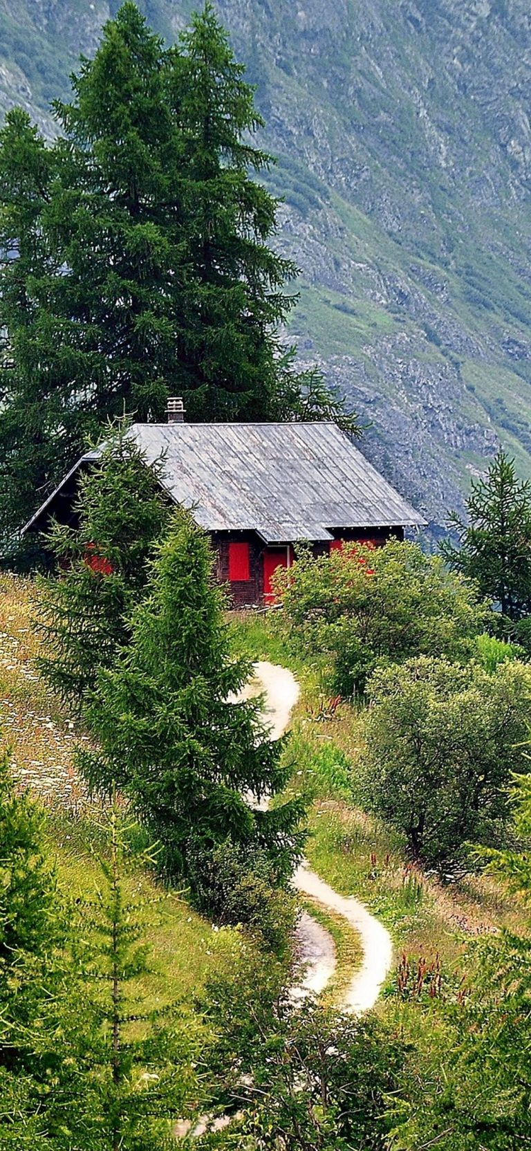 Alps Mountains Trees Road House 1080x2340 768x1664