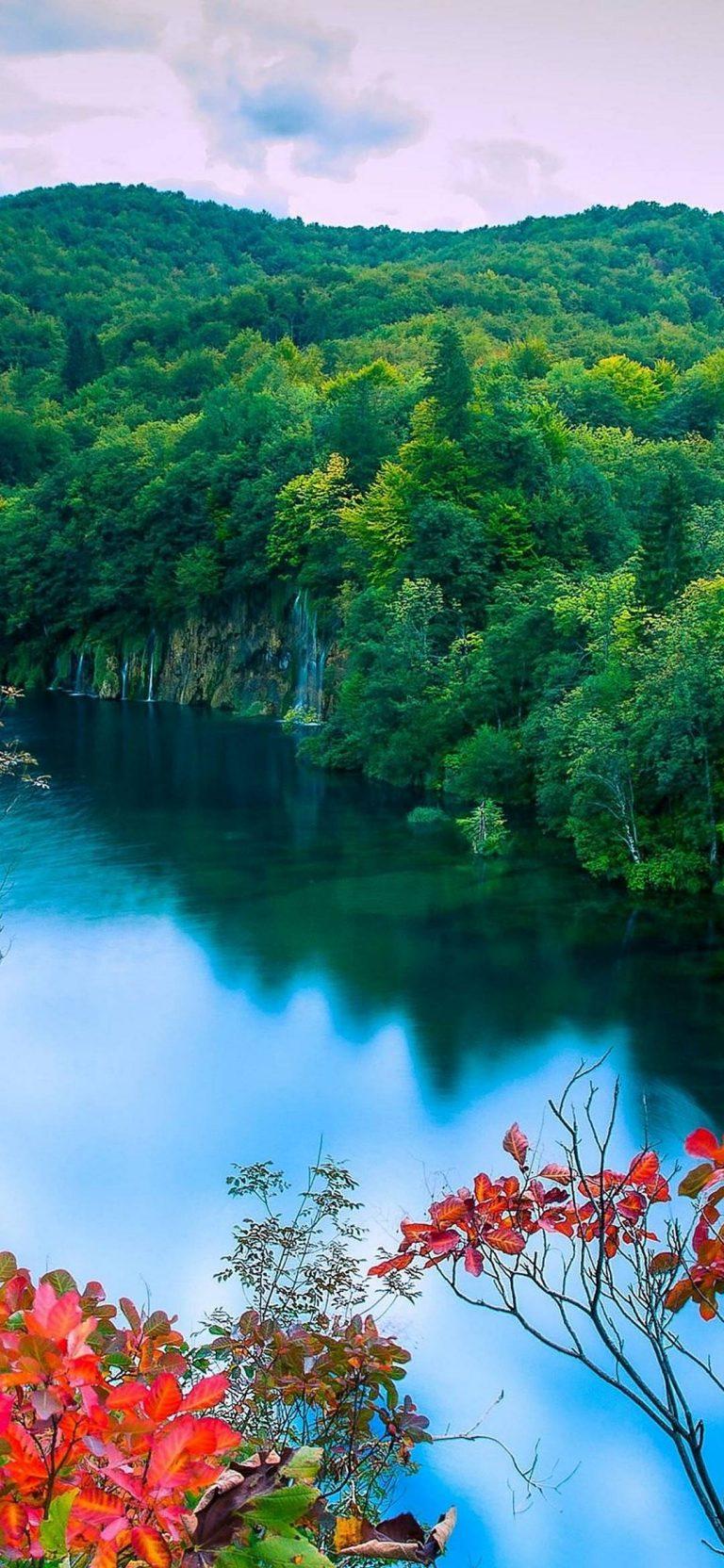 Autumn Forest Lake Trees Waterfalls 1080x2340 768x1664