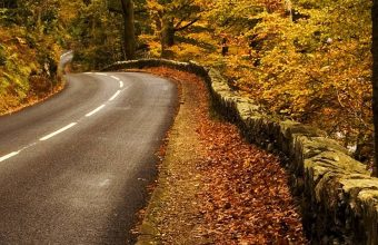 Autumn Road Wallpaper 1080x2340 340x220
