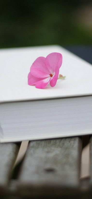 Bench Books Pink Flowers 1080x2340 380x823