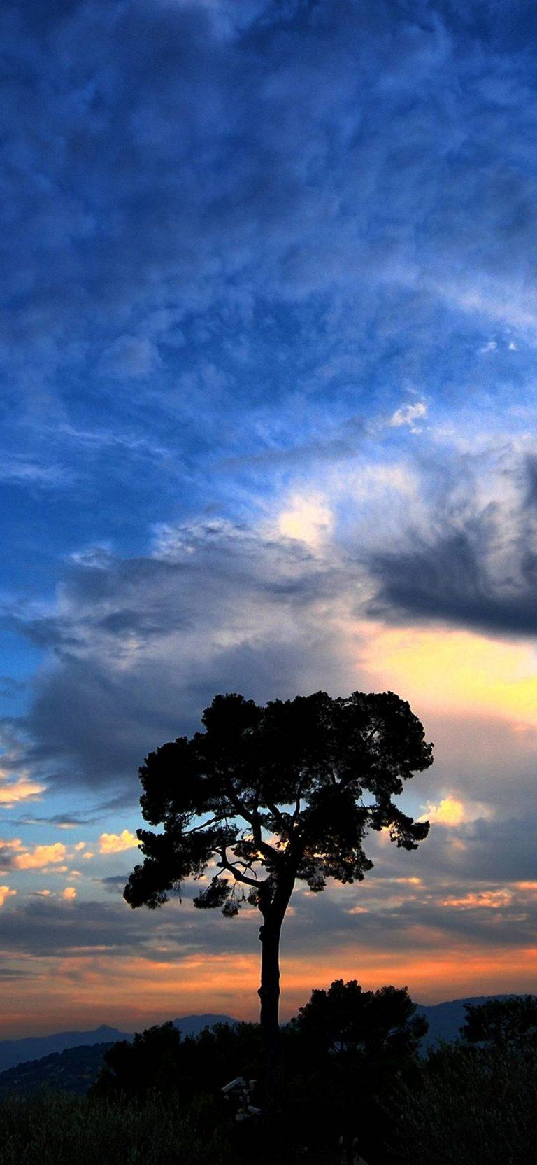 Dramatic Sky 1080x2340 768x1664