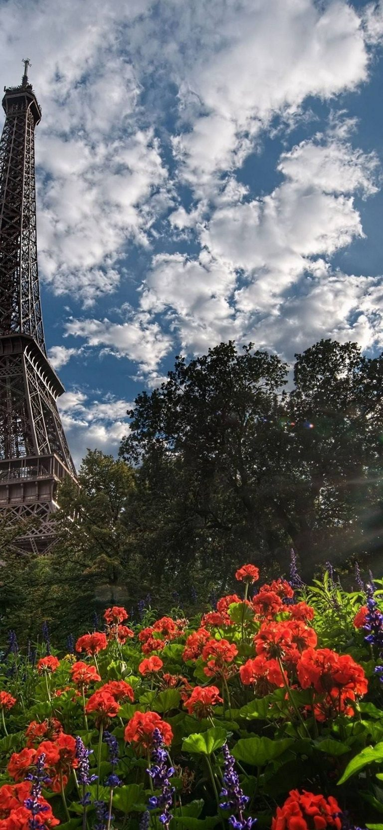 Eiffel Tower Trees 1080x2340 768x1664