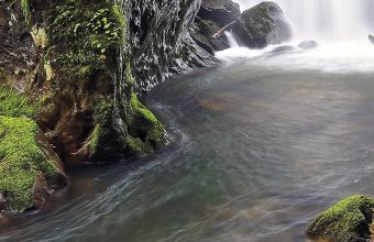 Forest River Waterfall Log Moss Rocks 1080x2340 340x220