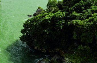 Green Island 1080x2340 340x220