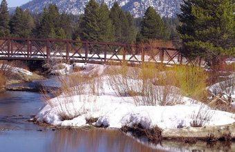 Lake Nature Trees 1080x2340 340x220