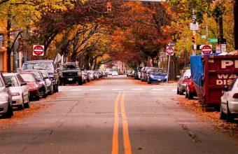 Landscapes Autumn Season Cars 1080x2340 340x220
