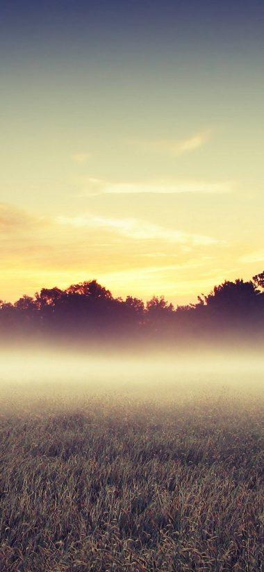 Morning Mist 1080x2340 380x823