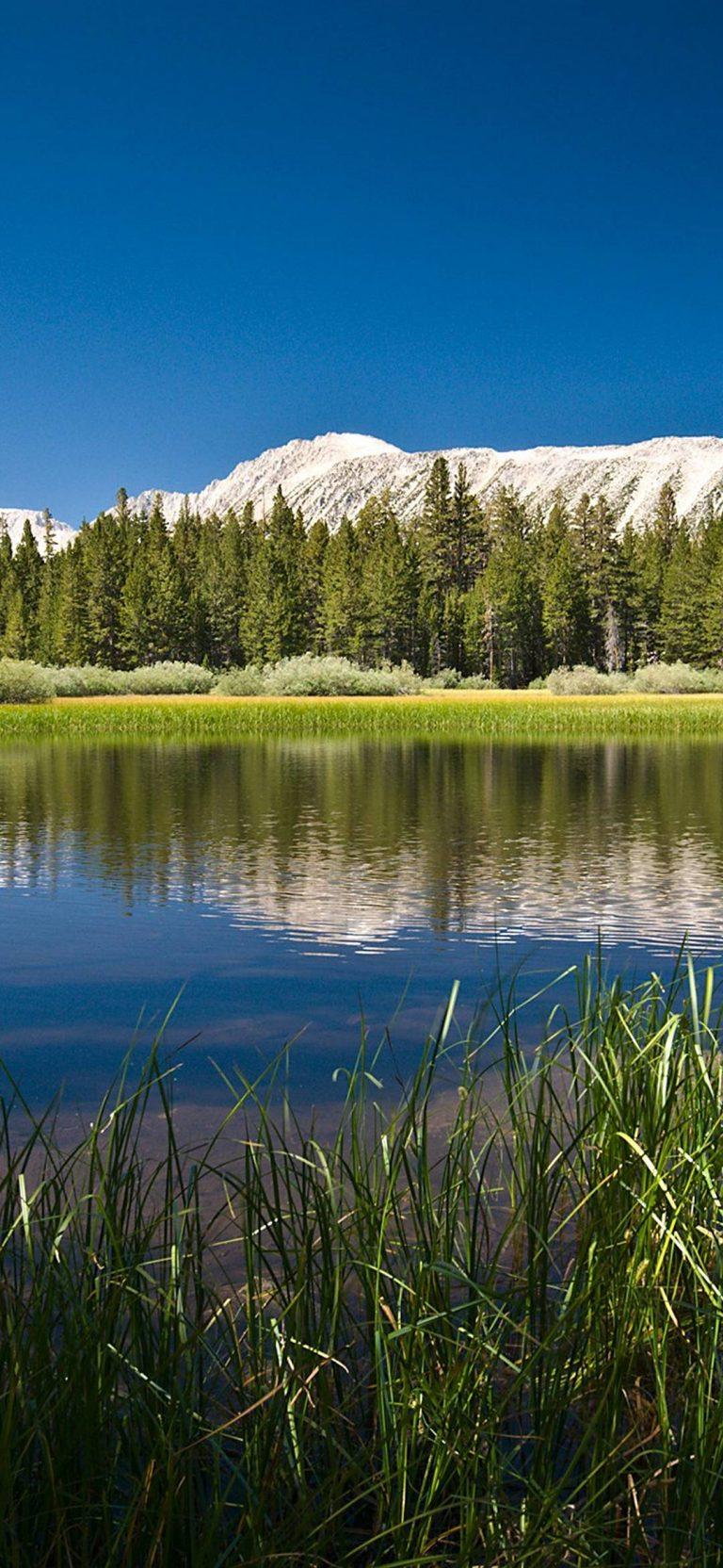 Mountain Lake 1080x2340 768x1664