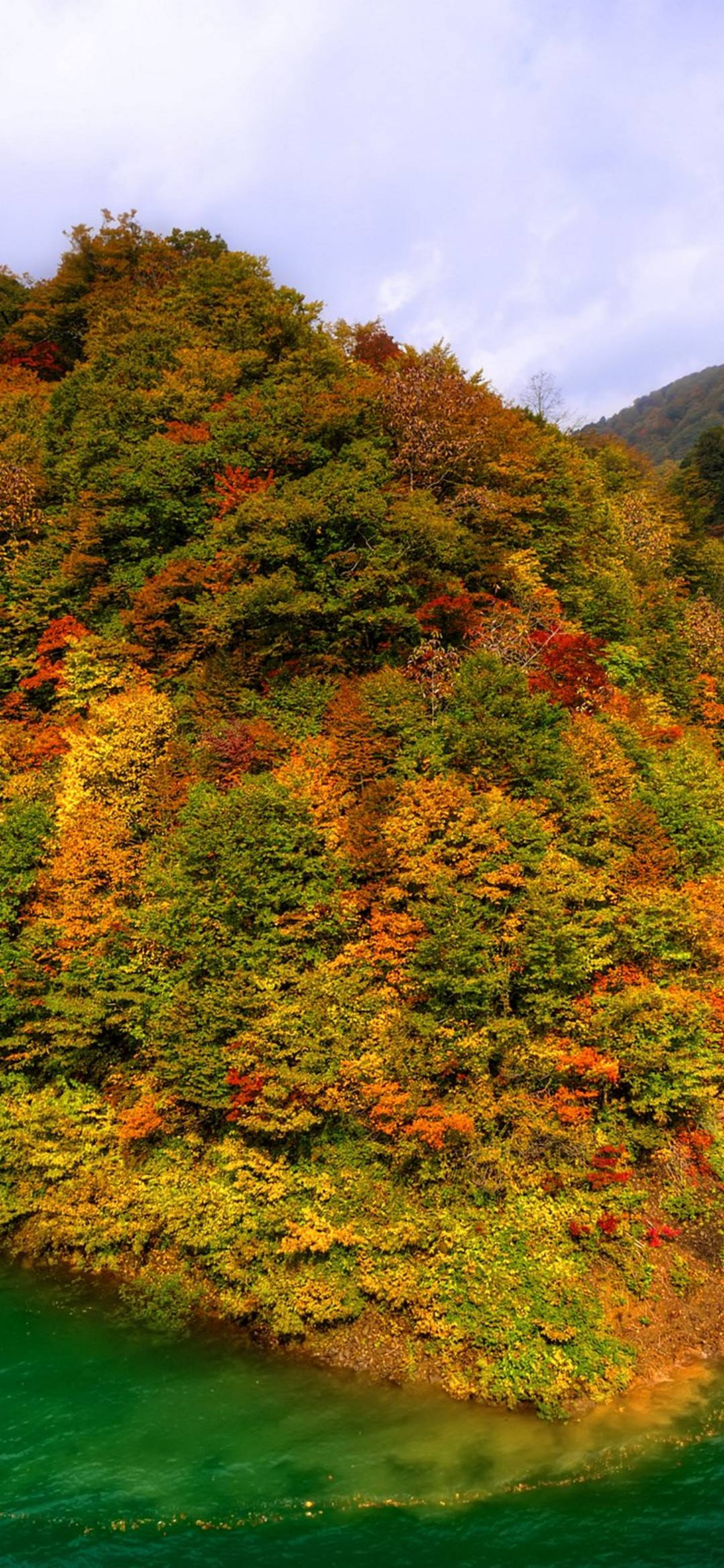 Mountains Japan Fall Forest Lake Autumn 1080x2340