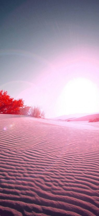 Pink Desert 1080x2340 380x823