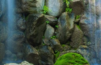 River Waterfall Rocks Plants Trees Nature 1080x2340 340x220