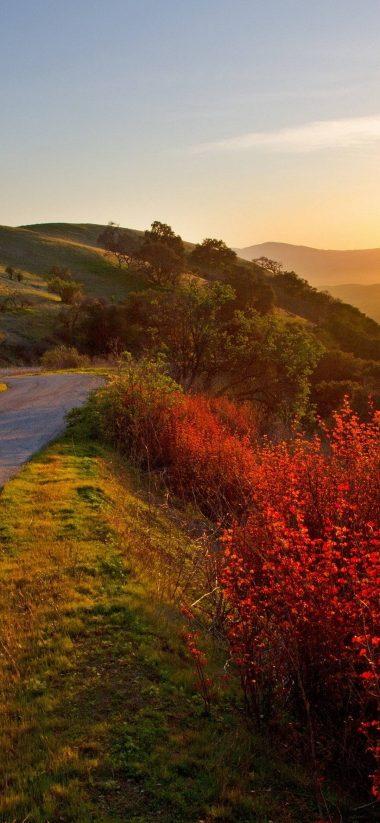 Road Fall Move 1080x2340 380x823
