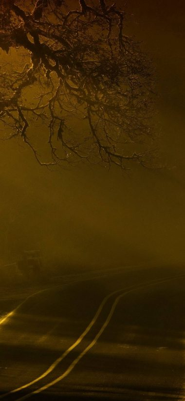 Road Night Fog 1080x2340 380x823