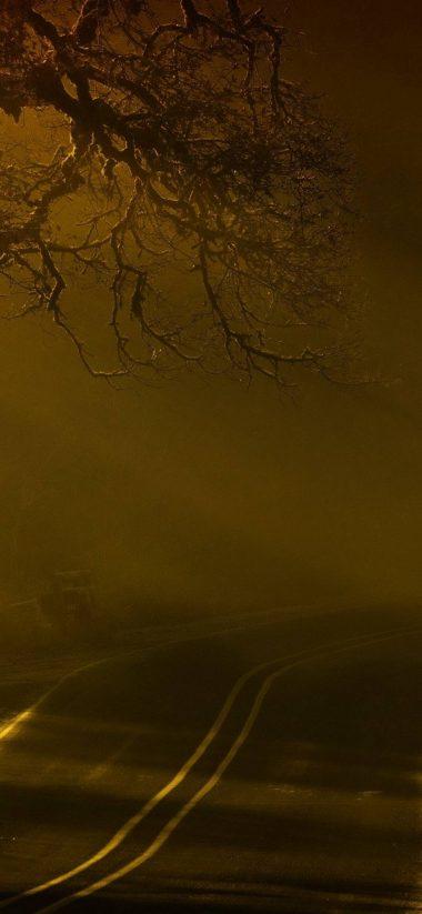 Road Night Fog 1080x2340 380x823