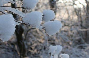 Road Snow Winter 1080x2340 340x220
