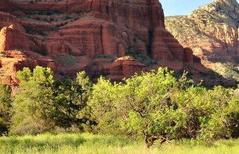 Sedona Arizona Mountains Rocks Trees 1080x2340 340x220