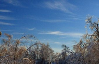 Sky Winter Snow Road 1080x2340 340x220