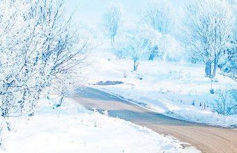 Snow Way 1080x2340 340x220