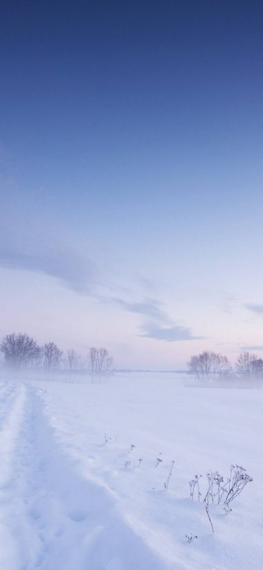 Snow Winter Field 1080x2340 380x823
