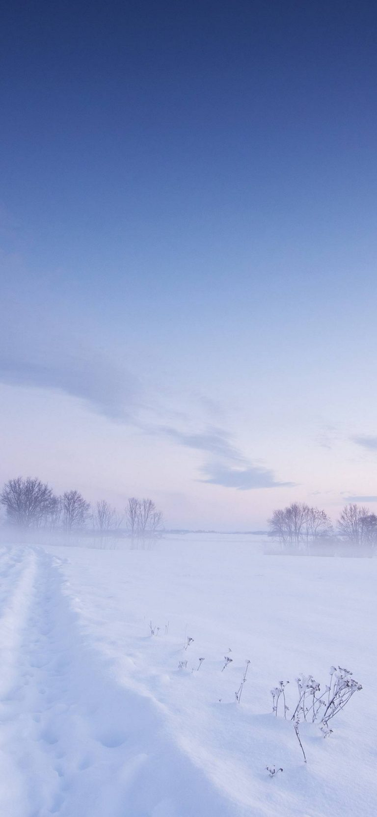 Snow Winter Field 1080x2340 768x1664