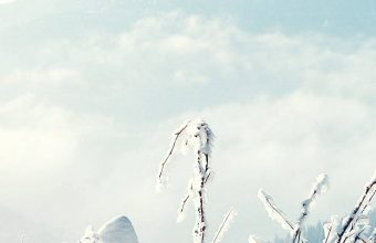 Snow Winter Mountains 1080x2340 340x220