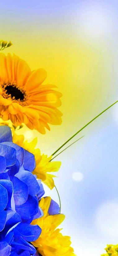 Spring Petals 1080x2340 380x823
