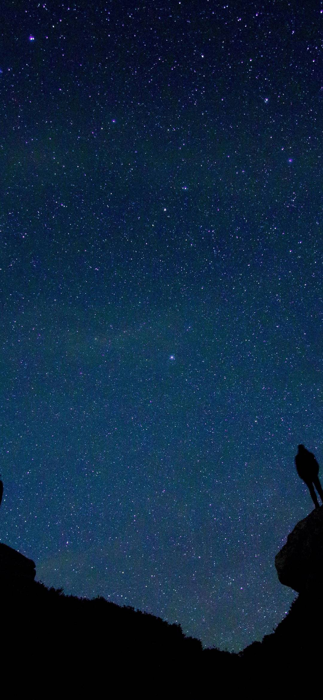 Starry Night Wallpaper 1080x2340