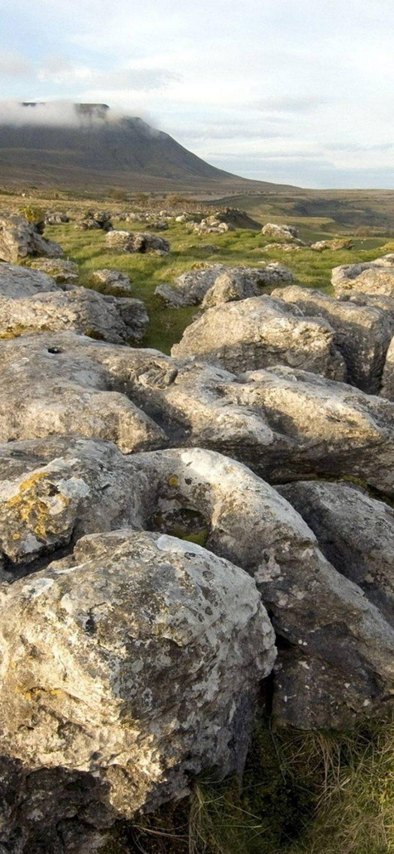 Stones Grass Sky 1080x2340 768x1664