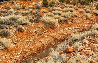 Usa Utah Mountain Field Stream 1080x2340 340x220