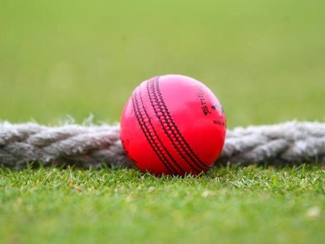 Cricket Wallpaper 01 640x480