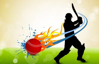 Cricket Wallpaper 03 3000x2244 340x220