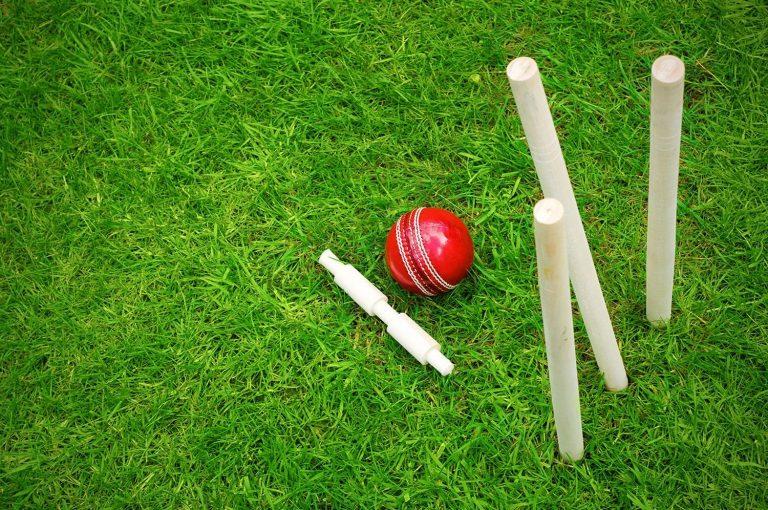 Cricket Wallpaper 04 1500x996 768x510