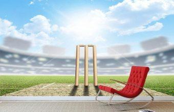 Cricket Wallpaper 06 800x576 340x220