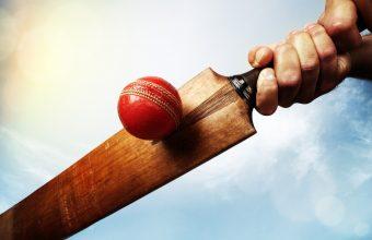 Cricket Wallpaper 09 2560x1600 340x220