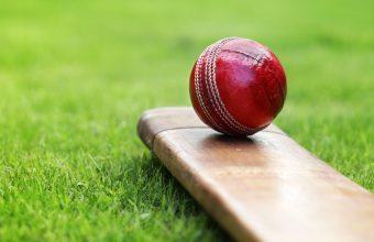 Cricket Wallpaper 11 5371x3581 340x220