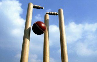 Cricket Wallpaper 16 1591x896 340x220