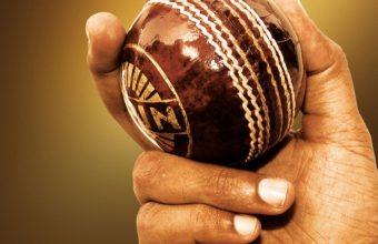 Cricket Wallpaper 17 960x854 340x220