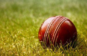 Cricket Wallpaper 20 1280x800 340x220