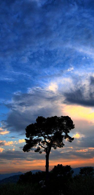 Dramatic Sky 1080x2244 380x790