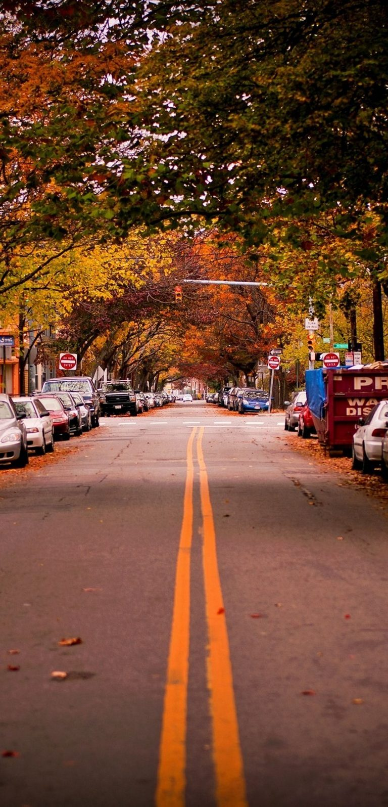 Landscapes Autumn Season Cars 1080x2244 768x1596