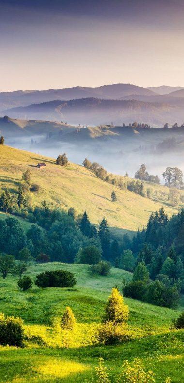 Mountains Grass Trees 1080x2244 380x790