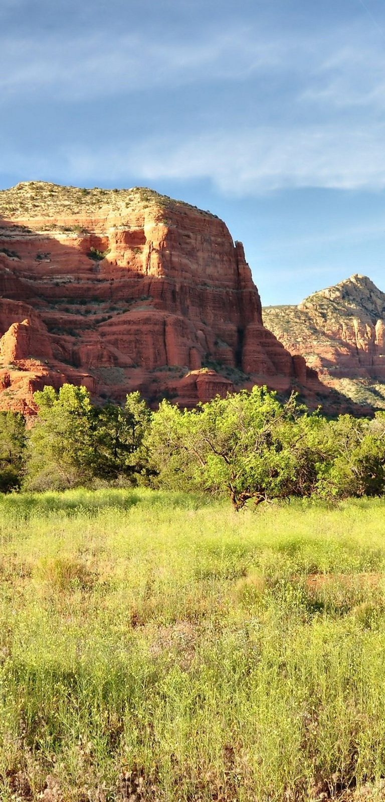 Sedona Arizona Mountains Rocks Trees 1080x2244 768x1596