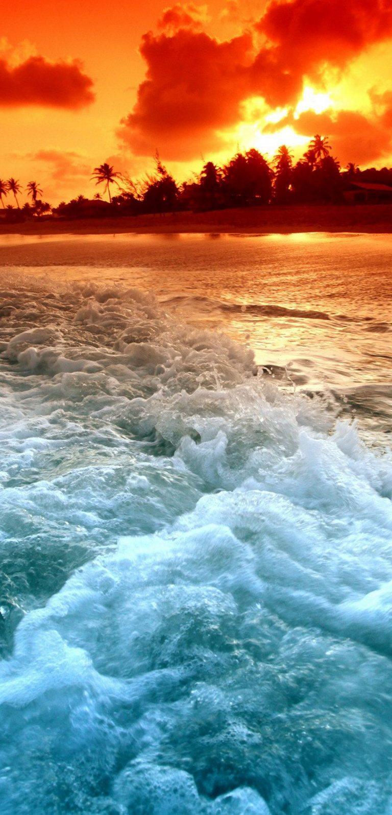 Tropical Beach Sunset 1080x2244 768x1596