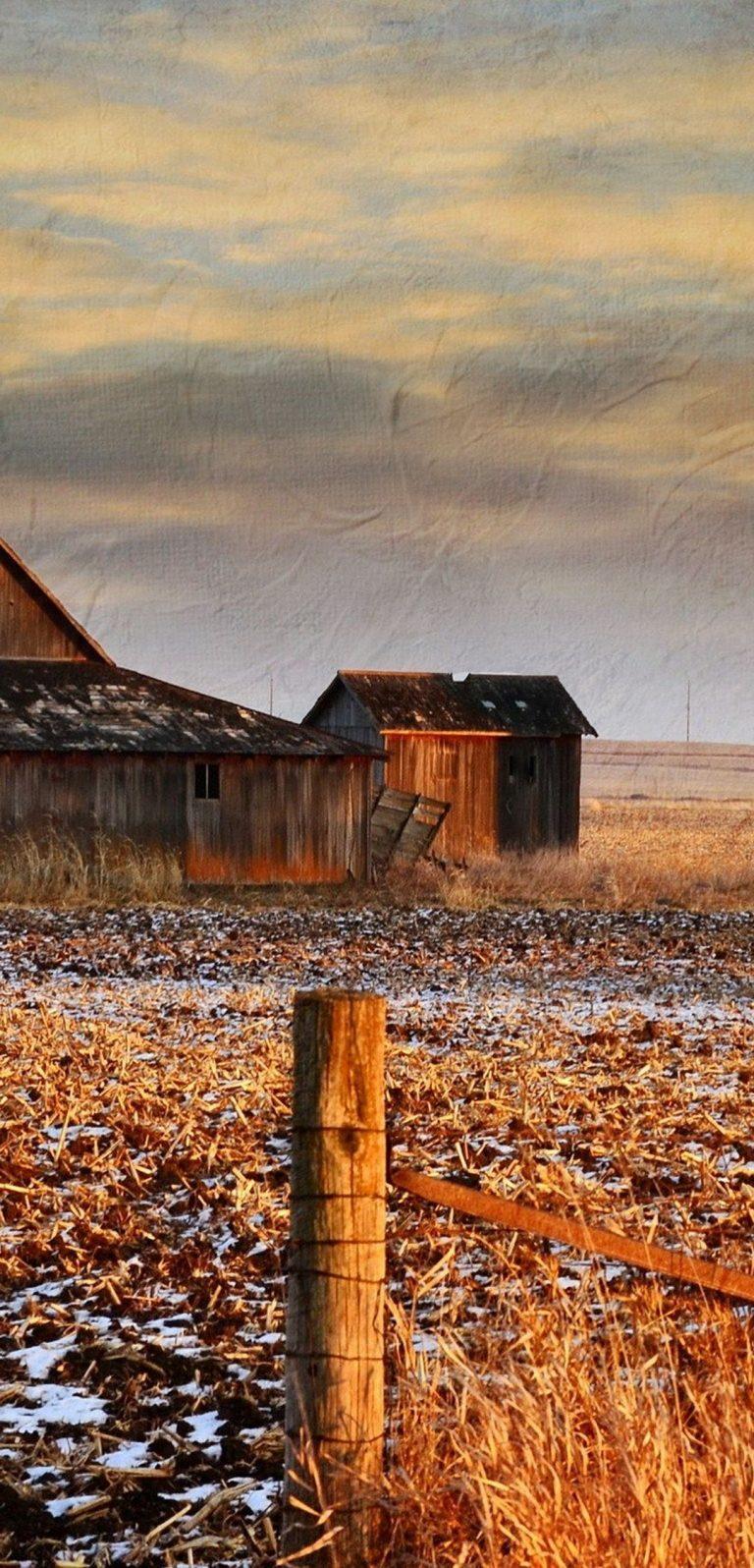 Winter Grass Sky 1080x2244 768x1596